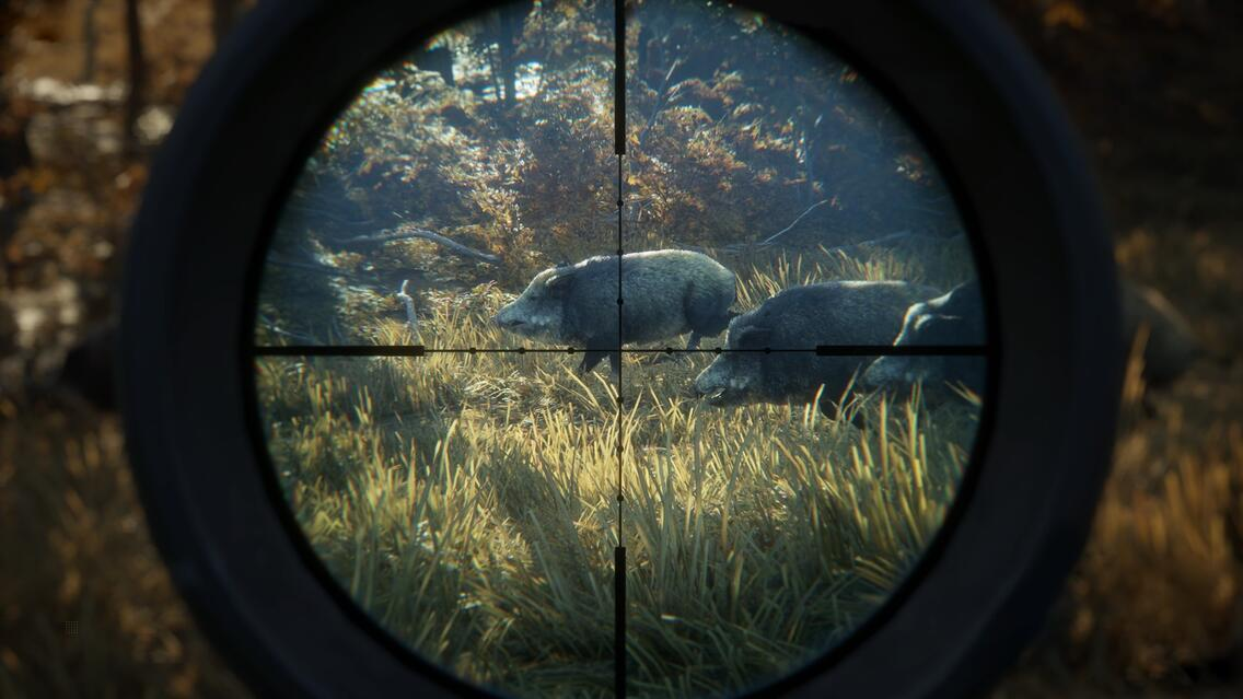 theHunter™: Call of the Wild