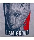 Marvel - Avengers Infinity War - Hoodie I am Groot (Größe M)