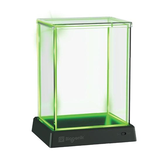 Glowbox Vitrine grün